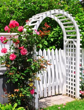 cottage garden design with gate