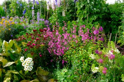 English Cottage Garden Design Ideas | Designing A Cottage Garden ...