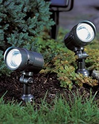 dual outdoor solar spotlights