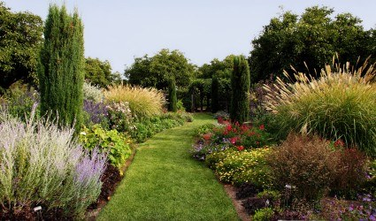 Create a flower bed using grasses ornamental grasses for for Grasses for flower beds